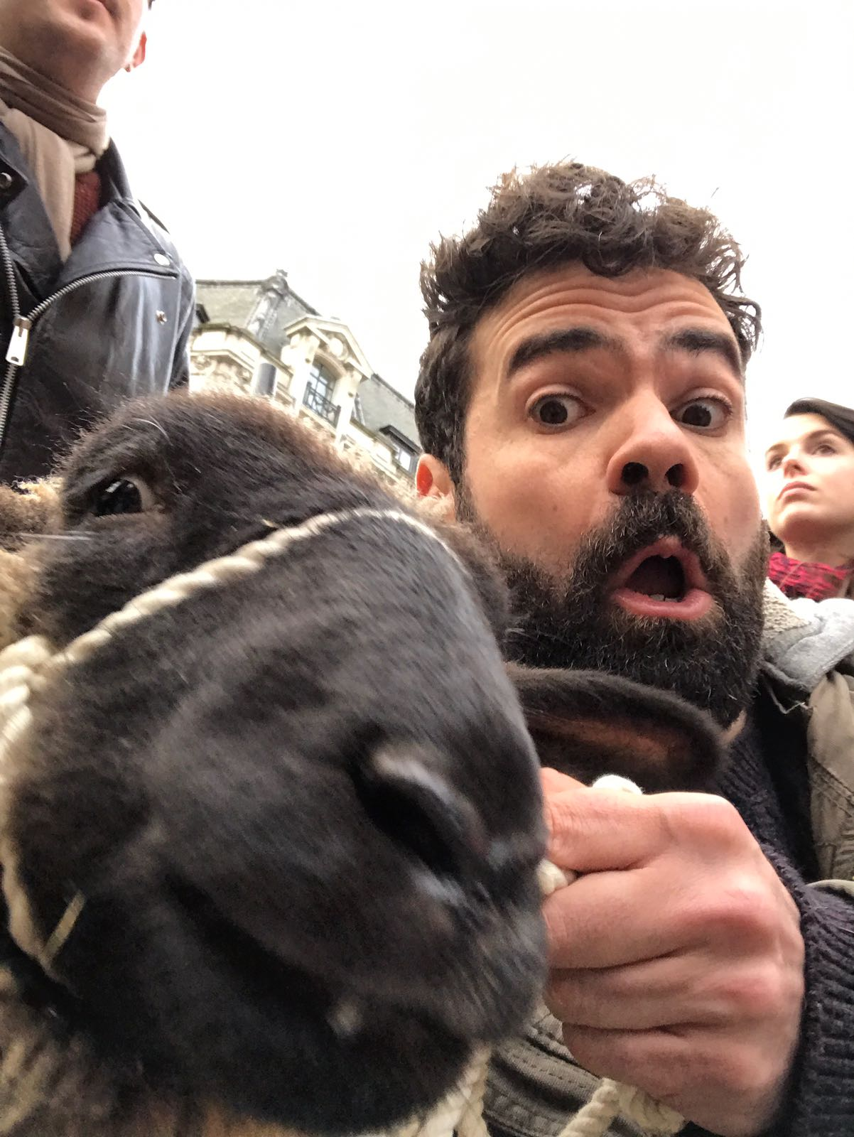 A close-up selfie photograph of a sheep and bearded and expressionate man on Oxford St in London.