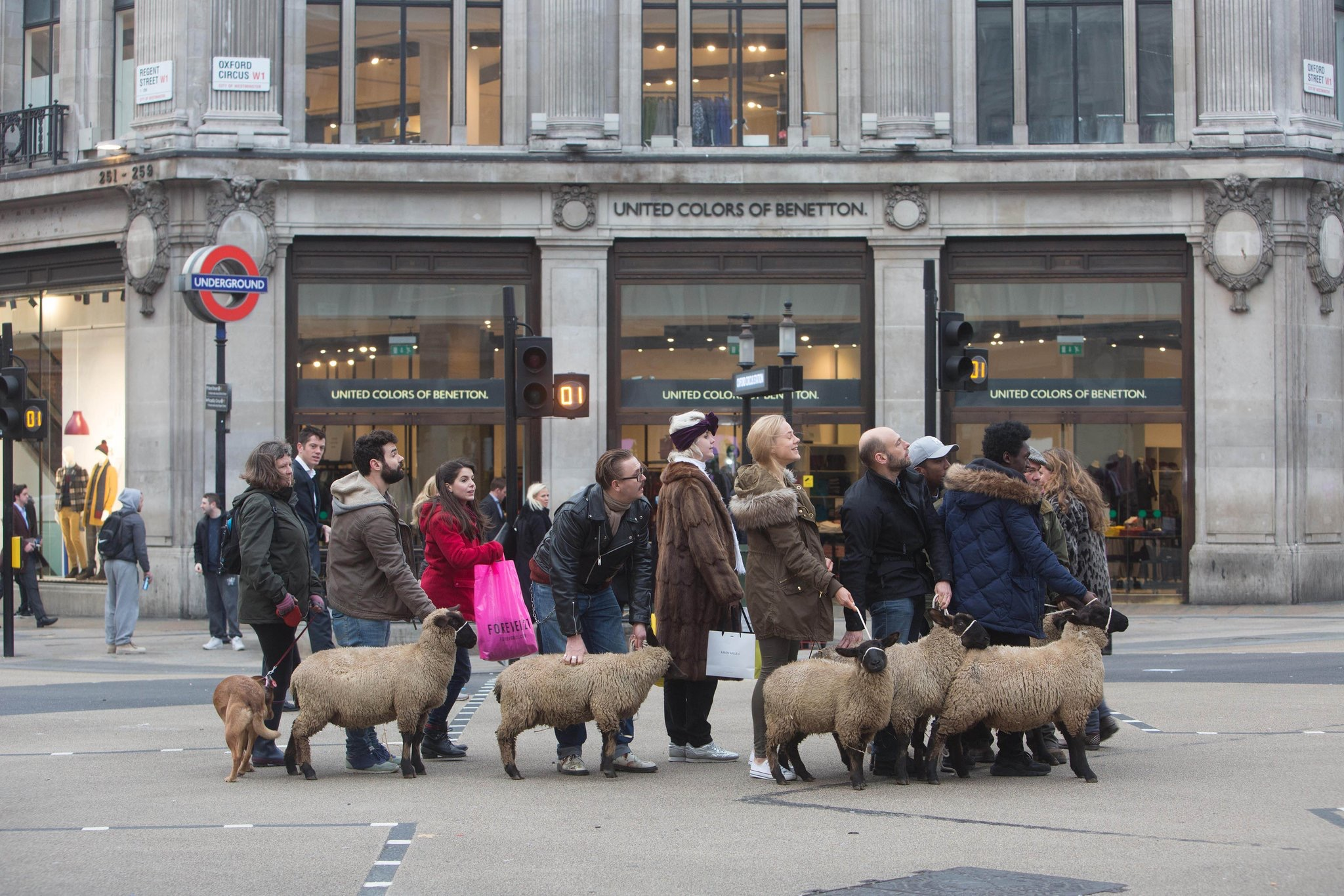A group of people dressed as shoppers each holding a woolly sheep on a rope stand in the centre of a busy intersection at Oxford Circus.